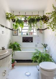 plant bathroom decor 35 small bathroom decor ideas that