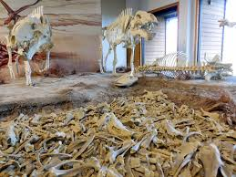 Hagerman Fossil Beds National Monument by 2dodges2go 8 6 14 Agate Fossil Beds Nm