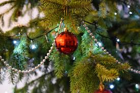 Longest Lasting Christmas Tree Uk by North Devon Beauty Blog Back To Beauty Mobile Beauticians