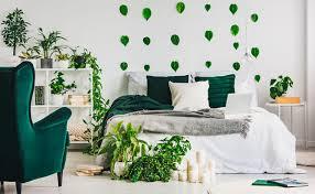 diese 9 pflanzen solltest du unbedingt im schlafzimmer haben