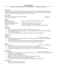 career coaching and resume writing sle research on information technology resume