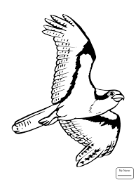 Coloring Pages Birds Osprey Flying