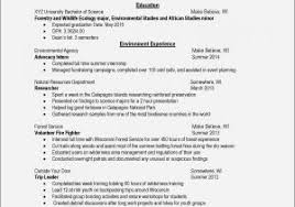 Sample Resume Account Manager Advertising Agency Beautiful Creative Examples At Ideas