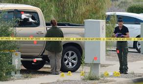 """Search Results For """"University Of New Mexico"""" 