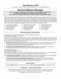 Store Manager Job Description For Resume Present Magnificent It Samples With Additional Service