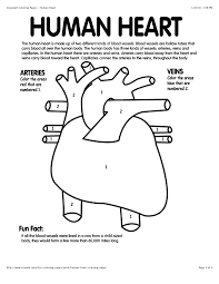 Human Heart Coloring Page With Coded Numbers For Making Some Parts Red And Other Blue