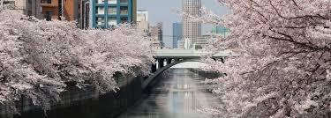 100 Apartments In Yokohama JP Vacation Rentals Houses More HomeAway