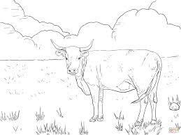 Coloriage Vache Veau Coloriage Vache Veau Taureau