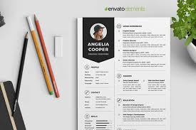 Professional Clean Resume Template 2