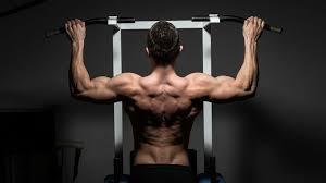 chaise romaine fitness doctor tower pro quelle est la meilleure barre de traction du marché avis et