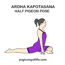 How To Do Ardha Kapotasana Half Pigeon Pose