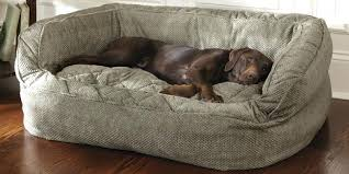Dog Leather Sofa Bed