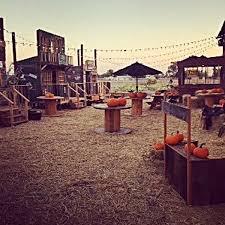 Pumpkin Patch Fresno Ca First News by Halloween U0026 Harvest Festivals Local Hanfordsentinel Com