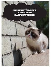 Demotivational Grumpy Cat Poster Print For Free