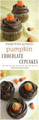 Bisquick Pumpkin Chocolate Chip Muffins by Pumpkin Chocolate Cupcakes Made From Scratch Its Yummi