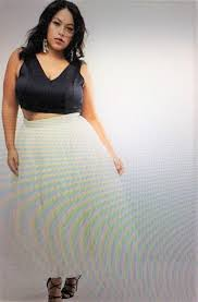 Plus Size High Waisted Tulle Skirt 79 Another Gorgeous Option For An Engagement Shoot