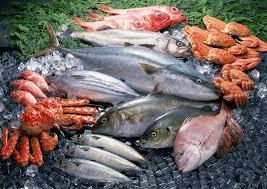 poisson a cuisiner comment bien choisir et bien cuisiner le poisson