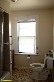 Bathroom: Bathroom Window Inspirational Modern Bathroom Window ... Bathroom Window Ideas Incredible Small Curtains 29 Most Ace Best On Within Curtain 20 Tall Shower Pinterest Double For Windows Bedroom Half Linen Rug Splendid Design Pink Rugs And Sets Decor Top Topnotch Exquisite Depot Styles Privacy Fabulous Brown Bottom Up Blinds Treatments Idea Swagroom Short Jjcpenney Ideasswag A Creative Mom 9 Treatment Deco Fashions