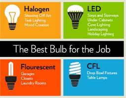 best light bulbs different types of light bulbs houselogic