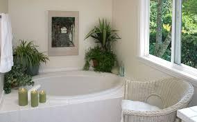 Best Plant For Bathroom by Bathroom Design Wonderful Dahlia Plant Best Plants For Dark