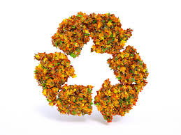 Waste Management Christmas Tree Pickup Orange County by Waste Management For Leaves Automated Waste Services