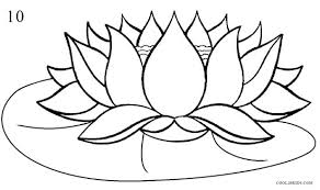 How to Draw Lotus Flower Step 10