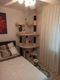 kratzbaum große katzen in rheinland pfalz ebay kleinanzeigen