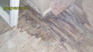 Tiling A Bathroom Floor On Plywood by Plywood Water Stains From Water Leaks Bathtub Tile Damage From