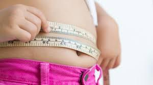 abnehmen nach plan nie mehr zu viel essen diät bild de