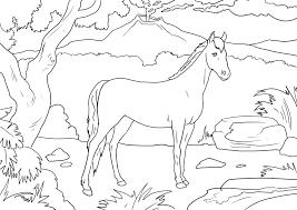 Caretas Para Colorear E Imprimir Dibujos Para Colorear IMAGIXS