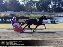 100 Wacountrybuilders PinjarraHarness On Twitter Winners Circle For The THE RURAL