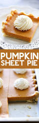 Pinterest Pumpkin Cheesecake Snickerdoodles by 2230 Best Pumpkin Images On Pinterest Pumpkin Recipes Pumpkin