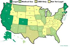 states pot is where is marijuana in the u s a the definitive guide to