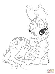 Cute Baby Coloring Pages Ba Zebra Page Free Printable Download