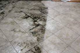 tile grout cleaning west palm royal palm fl