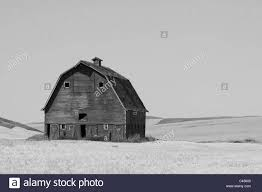 Barn In The Wheat Fields Of The Palouse Washington USA Stock Photo ... Pin By Cory Sawyer On Make It Home Pinterest Abandoned Cars In Barns Us 2016 Old Vintage Rusty A Gathering Place Indiego Red Barn The Countryside Near Keene New Hampshire Usa Stock The Barn Journal Official Blog Of National Alliance Classic Sesame Street In Bq Youtube Weathered Tobacco Countryside Kentucky Photo Fashion Rain Boots Sloggers Waterproof Comfortable And Fun Red Wallowa Valley Northeast Oregon Wheat Fields Palouse Washington