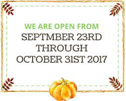 Best Pumpkin Patch In San Bernardino County by The Pumpkin Factory Live Oak Canyon Pumpkin Patch Home