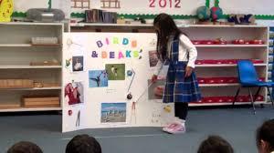 School Project Poster Board