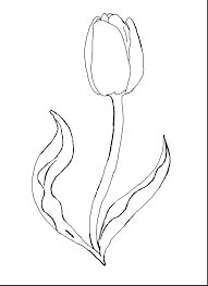 Spring Flowers Coloring Pages Printable Preschool Magnificent Tulips Flower Sheets Cute Full Size
