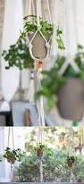 Floor To Ceiling Tension Pole Plant Hangers by Diy Macrame Plant Hangers To Craft In Your Spare Time Diy