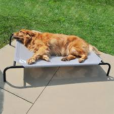 Burrowing Dog Bed by Furniture Coolaroo Dog Bed Dog Bed Beside Bed Dog Beds Elevated