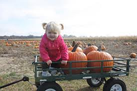 Best Pumpkin Patches Indianapolis by Find Corn Mazes In Indiana Longest And Best Corn Mazes And
