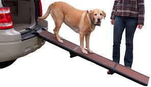 Pet Car Ramp Dog Ladder Stairs Steps Outdoor SUV Truck Folding ... Folding Alinum Dog Ramps Youtube How To Build A Dog Ramp Dirt Roads And Dogs Discount Lucky 6 Ft Telescoping Ramp Rakutencom Load Your Onto Trump With For Truck N Treats Using Dogsup Pet Step For Pickup Best Pickup Allinone Pet Steps And Nearly New In Box Horfield Land Rover Accsories Dogs Uk Car Lease Pcp Pch Deals Steps Fniture The Home Depot New Bravasdogs Blog Car Release Date 2019 20