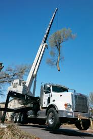 North Carolina Tree Service Co. Relies On National Crane Boom Truck