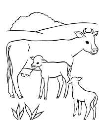 Baby And Mother Cow Coloring Pages