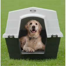 Coolaroo Dog Bed Large by Coolaroo Large Plastic Dog Kennel Bunnings Home Is Where The