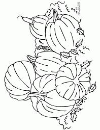 pile of pumpkins 650x841