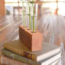 Rustic Laboratory Bud Vase Test Tube Vintage Fir Industrial Flower