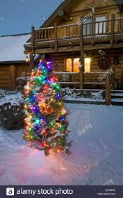 An Outside Christmas Tree Decorated With Ornaments After A New Snow