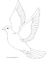 Birds Coloring Book Pages